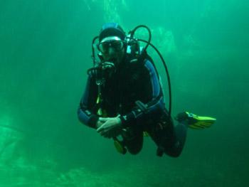 maggia diving