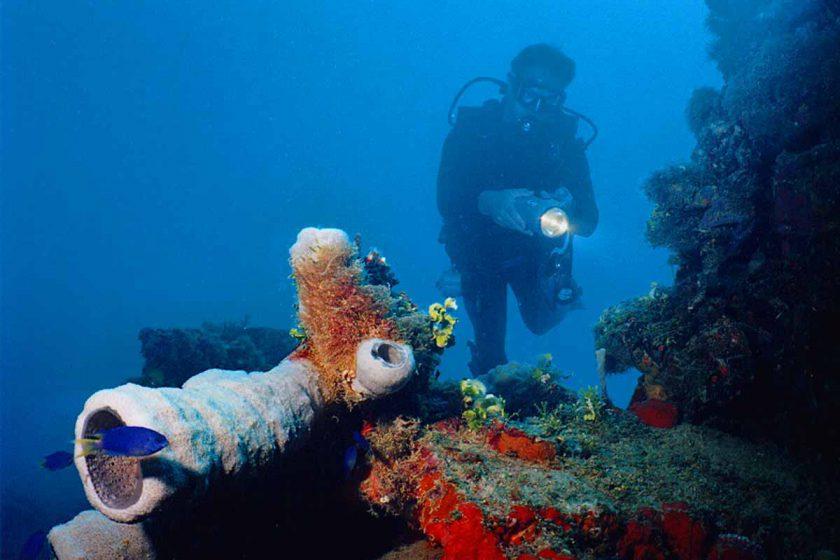 Chuuk Kensho Maru Corals