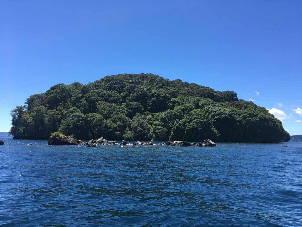 Exploring Lake Taupo New Zealand By Jet Ski Cristinsblog