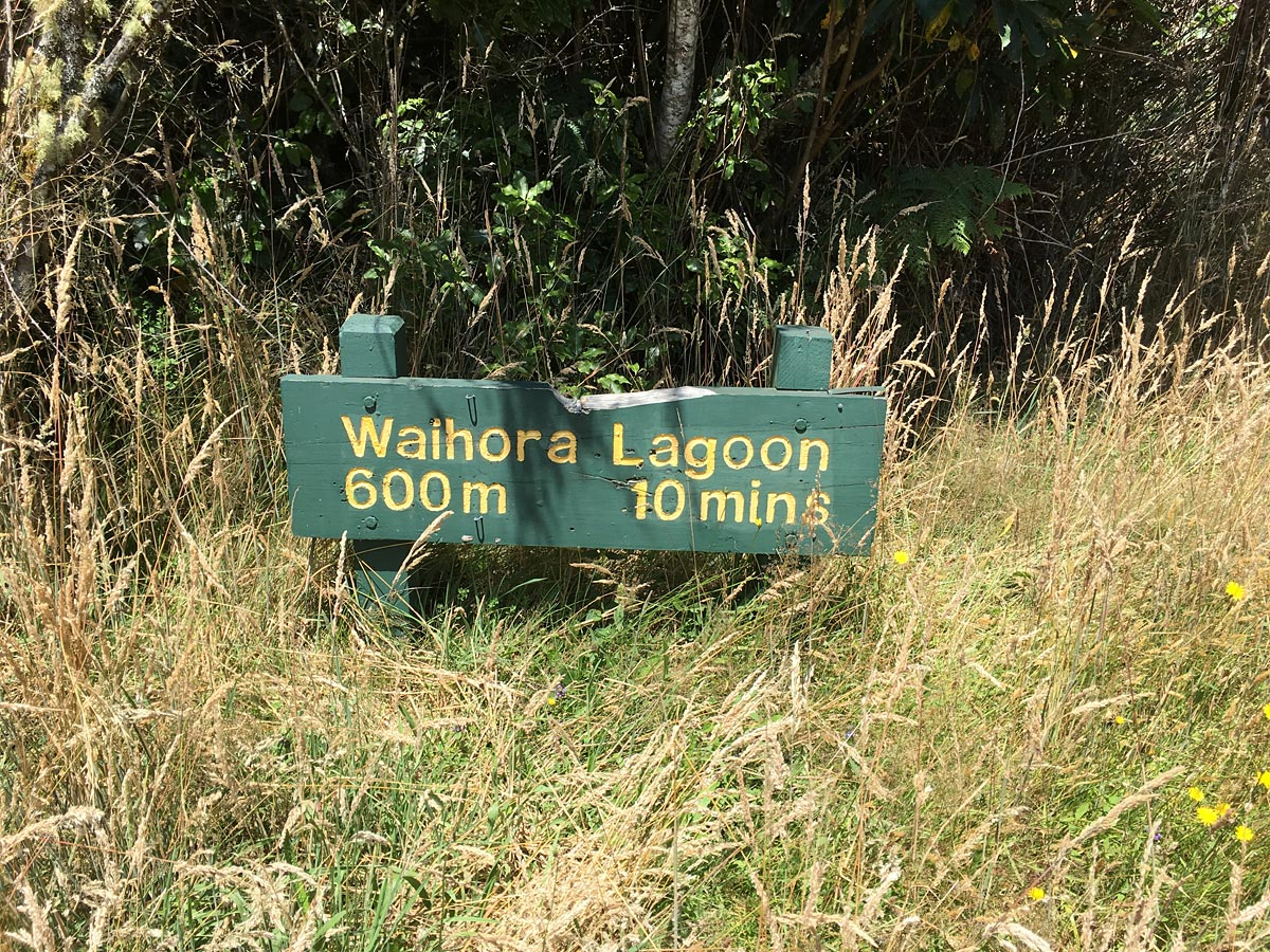Waihora Lagoon Pureora Forest New Zealand
